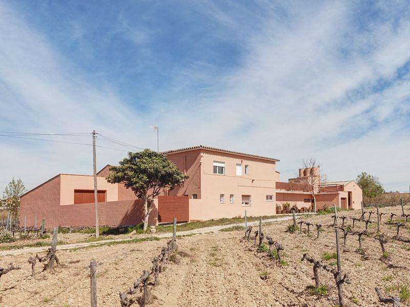 Bodega Barcelona Mediterranean Wine | Vinos y Cavas de calidad y de Denominación de Origen Penedès.