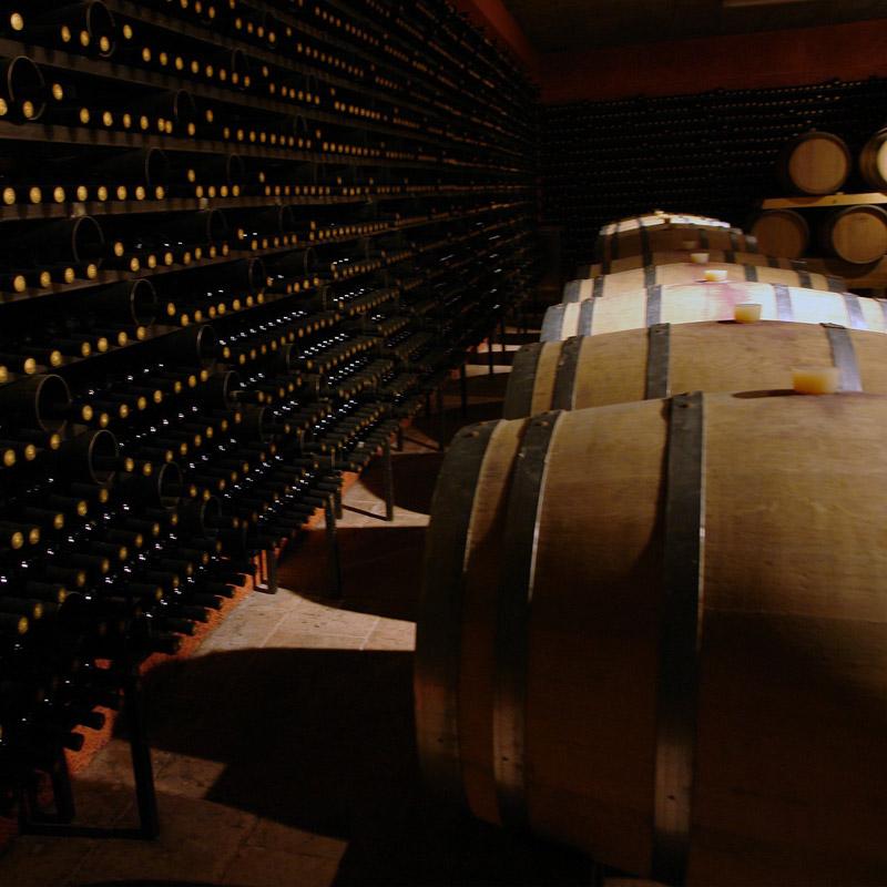 Barcelona Mediterranean Wine - Excelentes vinos y cavas D.O. Penedès